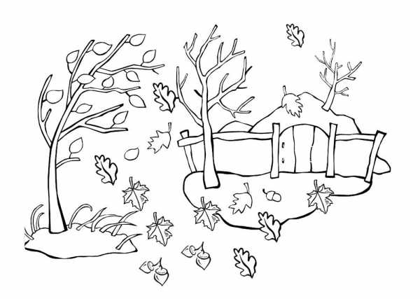 Осень деревья рисунок. Как нарисовать осеннее дерево ...