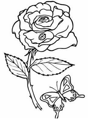 Раскраски цветок картинки. Раскраска Цветы для детей ...