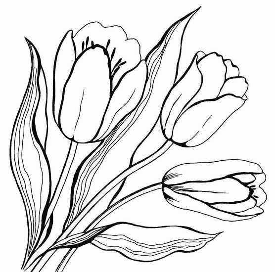 Рисунок цветочек для детей. Рисунок цветок для детей ...