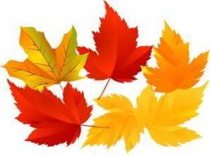 Стих осень 2 класс. Стихи на тему Осень для 2 класса ...