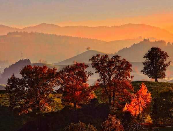 Загадки с ответами на тему осень. Загадки про Осень для ...